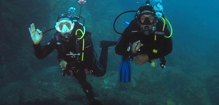 Dykning medel, heltid Niolon