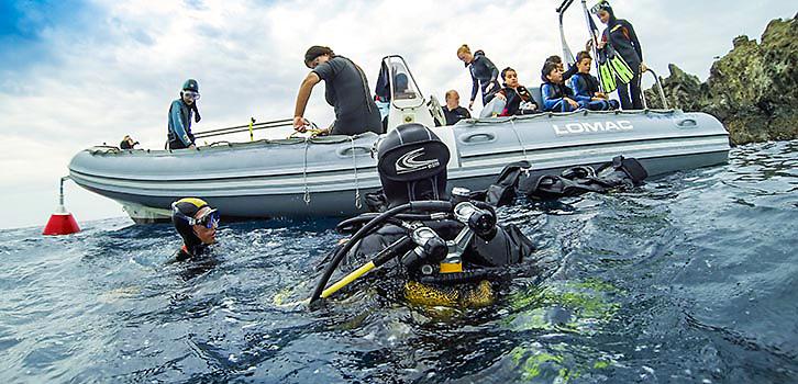 Dykning nybörjare heltid Niolon